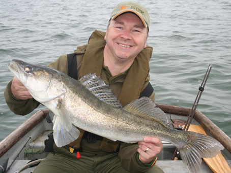 Fine Grafham Zander caught on bobcat lure